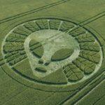 Что на самом деле означают круги на полях?